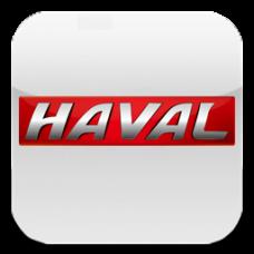 HAVAL (1)